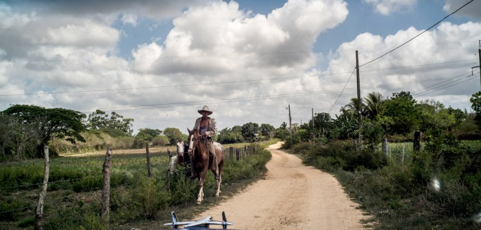 On the Cigar Trail in Cuba